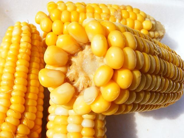 Mais aus dem Dampfgarer